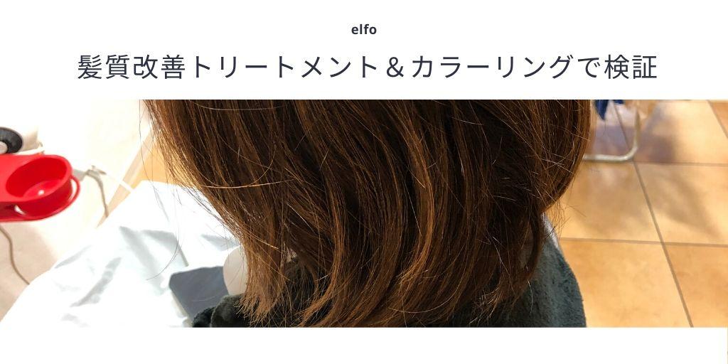 髪質改善トリートメント&カラーリングで検証
